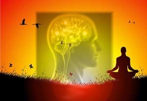 meditazione-e-cervello