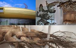Museo Pecci visita guidata