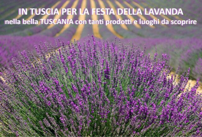 Tuscia la Festa della Lavanda e la bella Tuscania