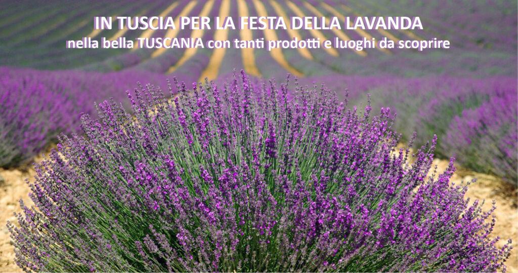 Tuscia per la Festa della Lavanda e le bellezze di Tuscania